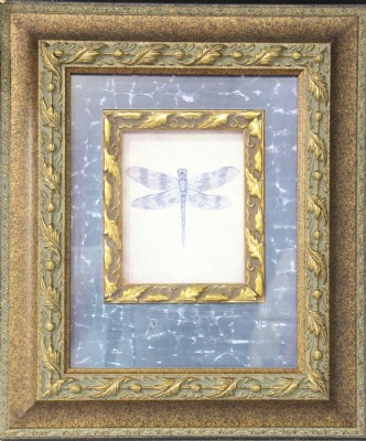Brown Spotted Dragonfly Framed Art Print