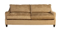 Two Cushion Contemporary Sofa